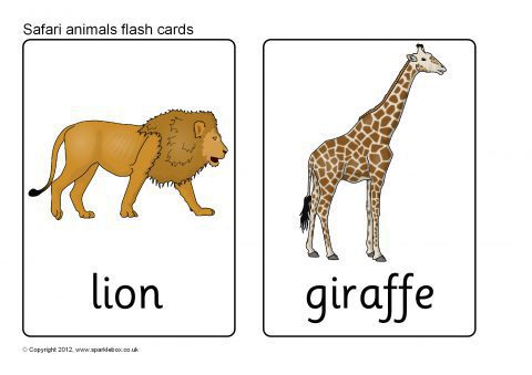 Transformative image with printable animal flash cards