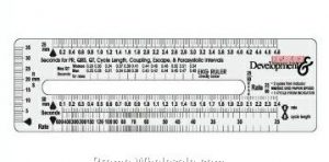 69 Free Printable Rulers Kittybabylovecom