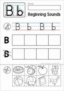 Letter B Cut and Paste Worksheets