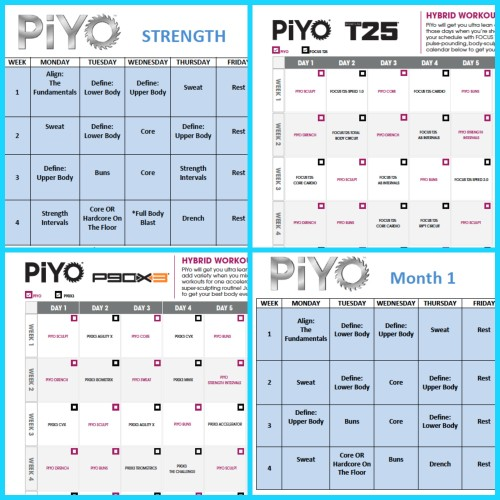 photo relating to T25 Schedule Printable called 19 Utilitarian Training Calendar Templates