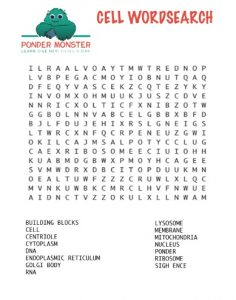 Cell Word Search